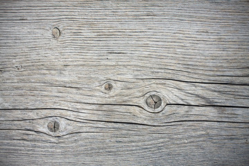 Old wood texture, background