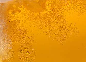 Beer bubbles.