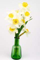Photo sur Aluminium Daffodils Bunch