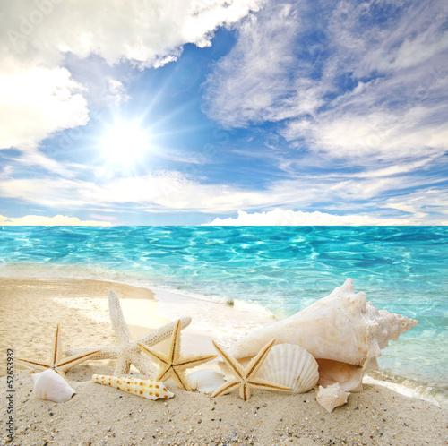 морская соль ракушки полотенце отдых бесплатно