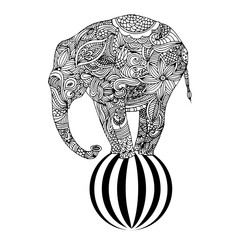 Elephant on ball