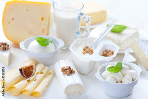 milk and dairy products essay