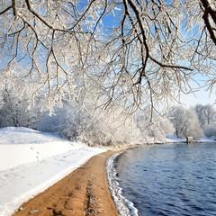river bank in winter