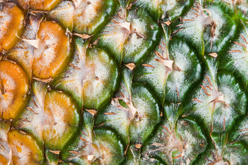 The surface of pineapple in Thailand