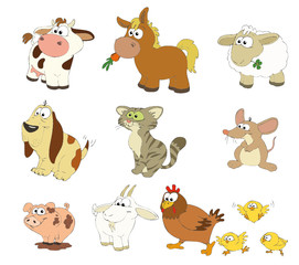 Tiere, Bauernhof, Farm, Farmtiere, Bauernhoftiere