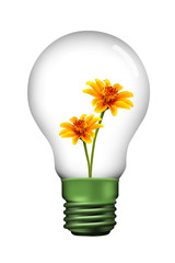 yellow flower in Lamp