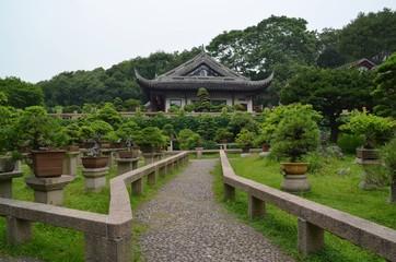 Bonsai garden at Tiger Hill. Suzhou, China.