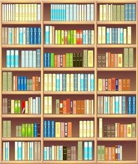 Bookcase full of different colorful books