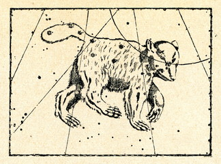 Ursa Major constellation (Atlas Coelestis, Flamsteed)
