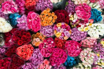 Variety roses