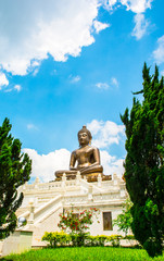 Buddha statue of thailand on natural