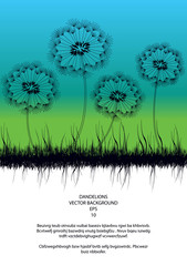 vector background with dandelions silhouettes