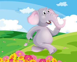 An elephant running at the hill with flowers