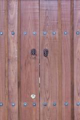 lion head knocker on the doors