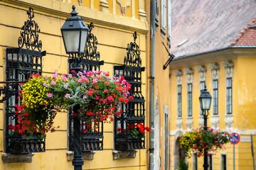 Printed kitchen splashbacks Budapest Antique iron street lamp in Budapest (Hungary).