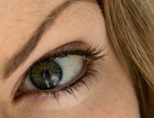 Beautiful girl eye with a lens
