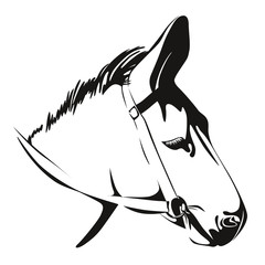 Head of Donkey. vector drawing
