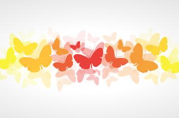 Butterflies vector background