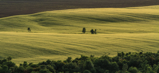 Eastearn European countryside and evening light in summer