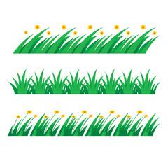 Grass green field lawn flower nature herb