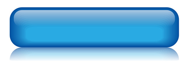 BLANK web button (rectangular blue vector)