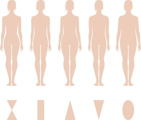 Vector illustration of women's figures. Different types