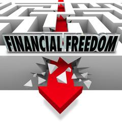 Financial Freedom Break Through Money Problems Bankruptcy Bills
