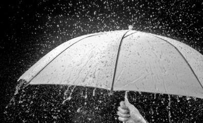 Umbrella in the rain. rain falling on umbrella
