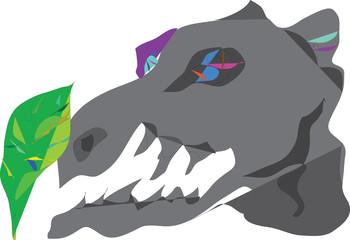 skull, dinosaur,