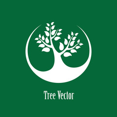Concept vector graphic- white abstract tree icon(symbol) green b