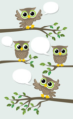 cute owls meeting