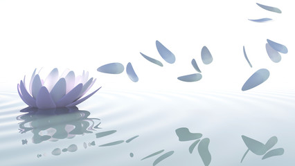 Wall Mural - Zen lotus with petals moved by wind
