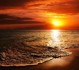 Stores à enrouleur Marron Sea sunset