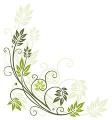 Frühling, filigran, Blätter, Ranke, Grüntöne