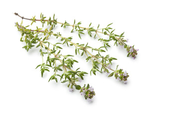 Twigs of thyme