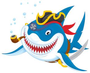 Great white shark pirate