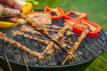 Fire and grilling theme with grilled food