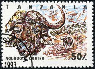 Stamp printed in Tanzania , shows buffalo
