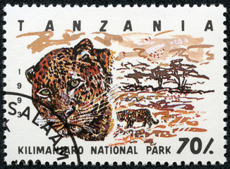 Stamp printed in Tanzania , shows leopard
