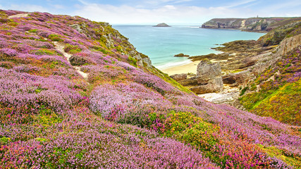 Wall Mural - Panoramic view over Cap Frehel,  Brittany, France