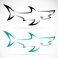 Vector image of an shark on a white background