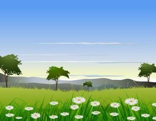beauty nature background