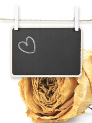 Hand drawing heart on blackboard with dry white rose background,