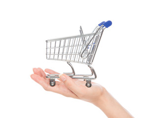 Empty shopping cart for sale on open hand i