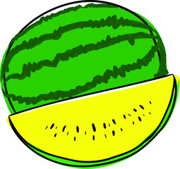 Hand drawn watermelon vector