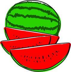 Hand drawn watermelon vector