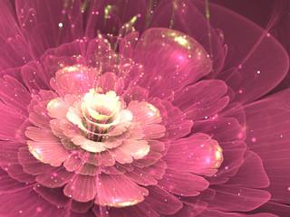 Canvas Afdrukken  - purple fractal flower