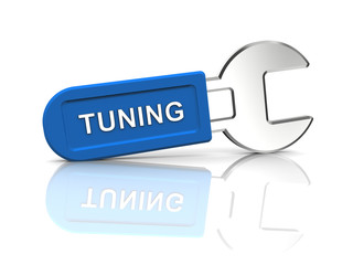 spanner for tuning