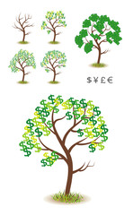 Money Tree Illustration Vector.