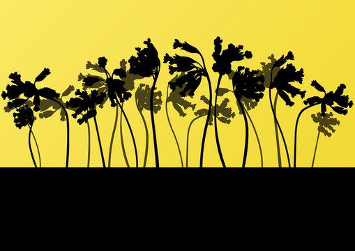 Wild larkspur plants detailed silhouettes illustration collectio